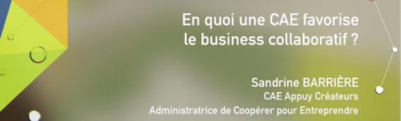 [Vidéo] En quoi une CAE favorise le business collaboratif ? par Sandrine Barriere