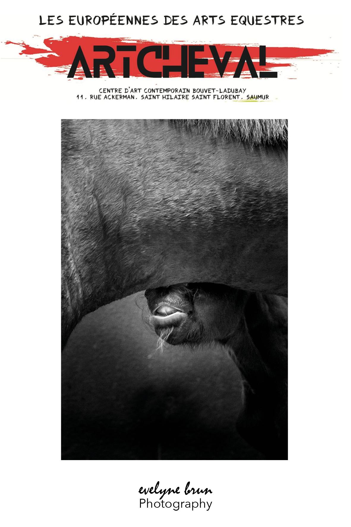 les-europeennes-arts-equestres